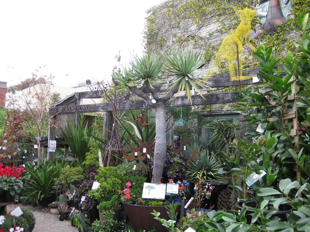 Garden Brunswick Garden Ftempo
