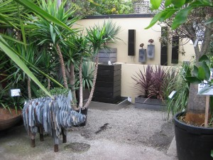 fountains-fitzroy-nursery and friendly pig