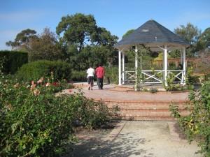 gazebo-rose-garden-St-Kilda Botanical Gardens