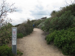 path-north-from-Sandringham Beach