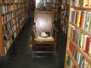 Syber's-Books-Chapel Street