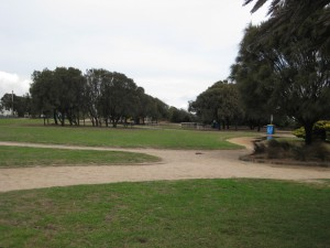 picnic-area-above-Sandringham Beach