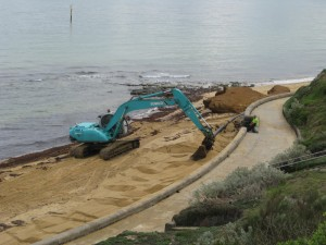 recent-work-being-done-on the foreshore