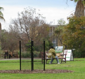 painting-st-kilda-botanical-gardens