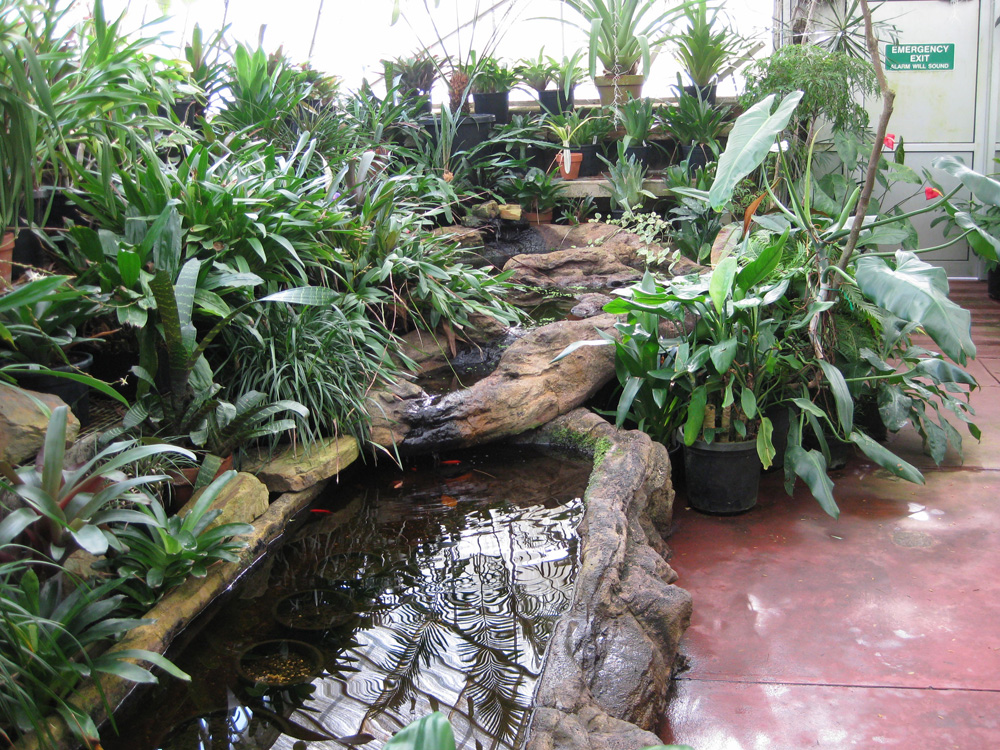 peace and relaxation in the tropical glasshouse melbourne ForFish Ponds Melbourne