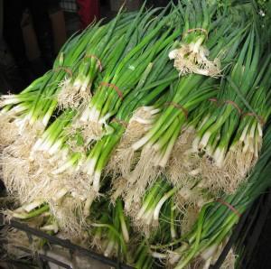 spring-onions-richmond