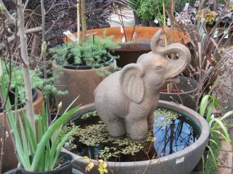 Water-feature-garden-of-eden