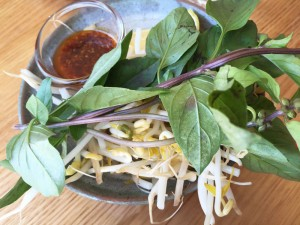 Vietnamese vegetables and herbs for the Pho