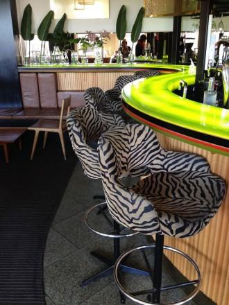 Ilona Staller bar