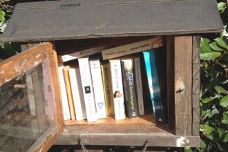 Little-Street-Library-Calis