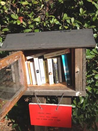 Little-Street-Library-Calis
